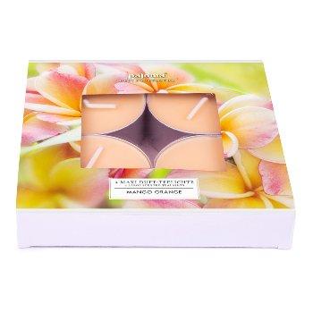 Maxi scented tealights Mango-Orange